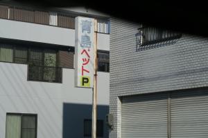DPP0398 - コピー.JPG